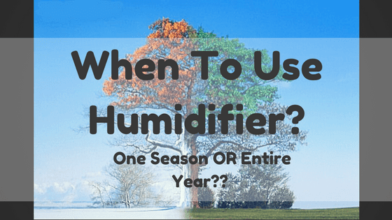 when to use a humidifier - One tree during four seasons