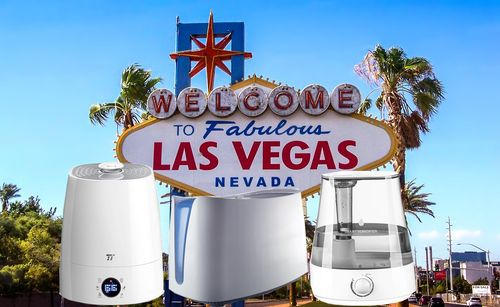 best humidifier for Las Vegas
