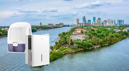 Is Dehumidifier needed in Florida