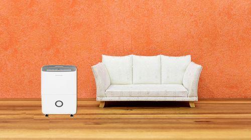 dehumidifier can dry damp walls
