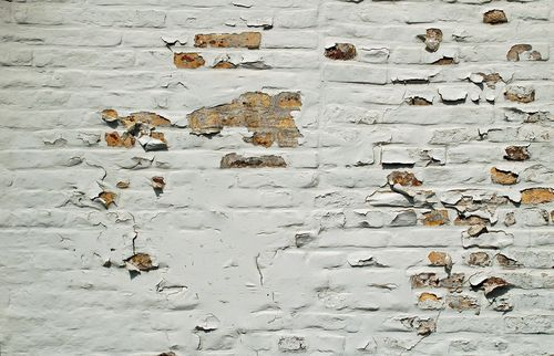 How to Avoid Damp Walls