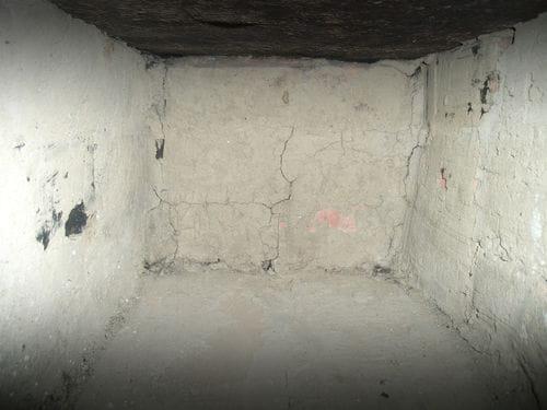 signs you need basement dehumidifier