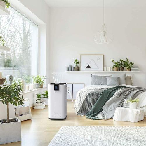 understanding your rooms moisture conditions