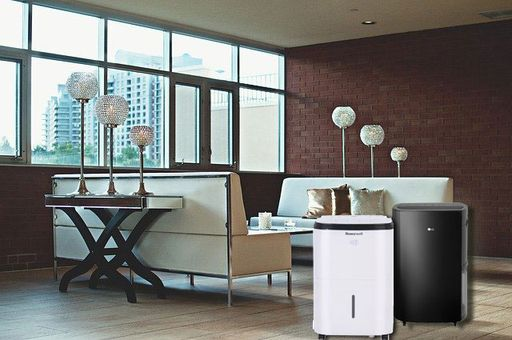 Best Medium-sized Dehumidifier